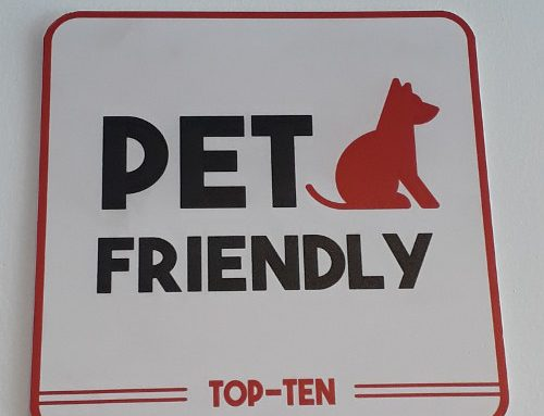 Restaurantes Pet Friendly y Google